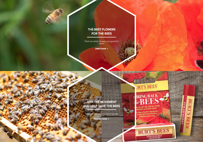 Bring back the bees landing page